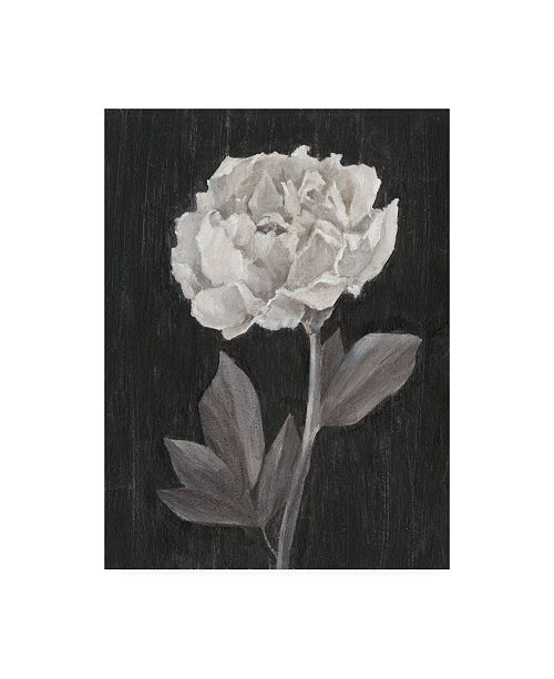 "Trademark Global Ethan Harper Black and White Flowers IV Canvas Art - 15.5"" x 21"""