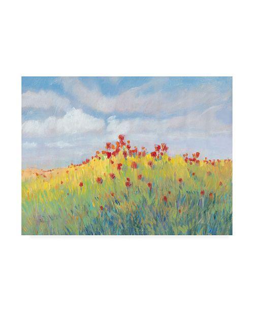 "Trademark Global Tim OToole Summer Breeze Meadow II Canvas Art - 15.5"" x 21"""