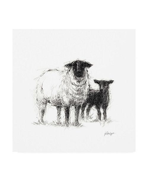 "Trademark Global Ethan Harper Charcoal Sheep Study II Canvas Art - 19.5"" x 26"""