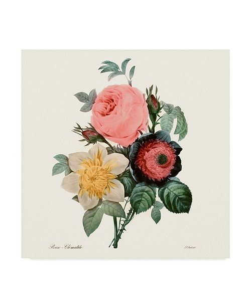"Trademark Global Pierre Redoute Blushing Bouquet II Canvas Art - 15"" x 20"""