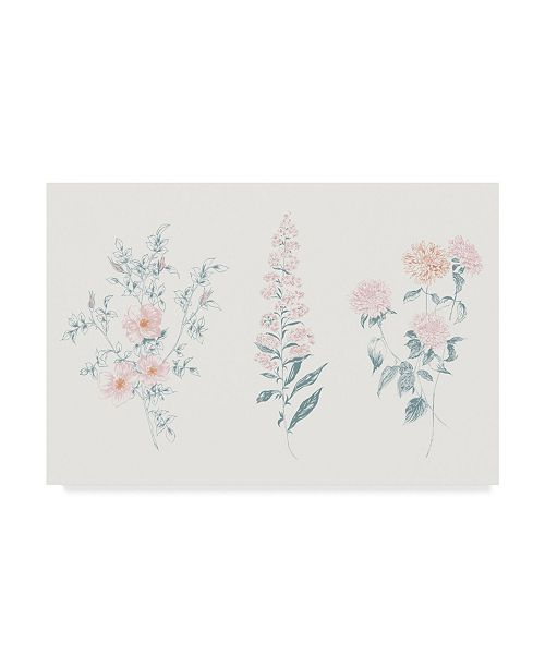 "Trademark Global Wild Apple Portfolio Flowers on White IX Contemporary Canvas Art - 37"" x 49"""