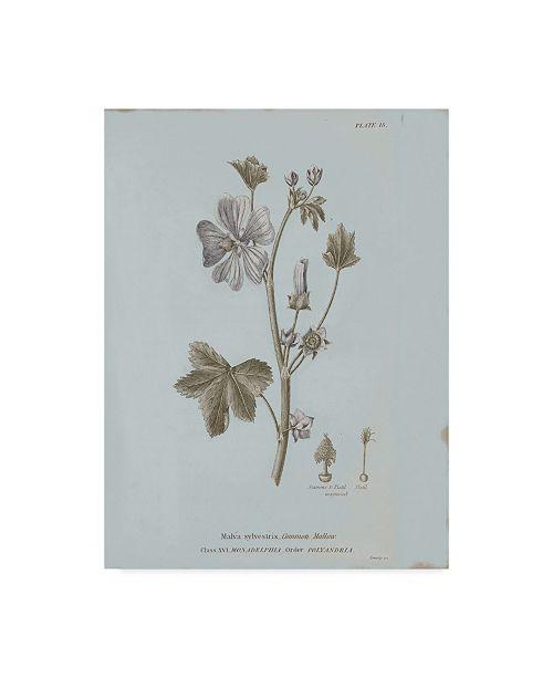 "Trademark Global Wild Apple Portfolio Conversations on Botany VII Blue Canvas Art - 37"" x 49"""
