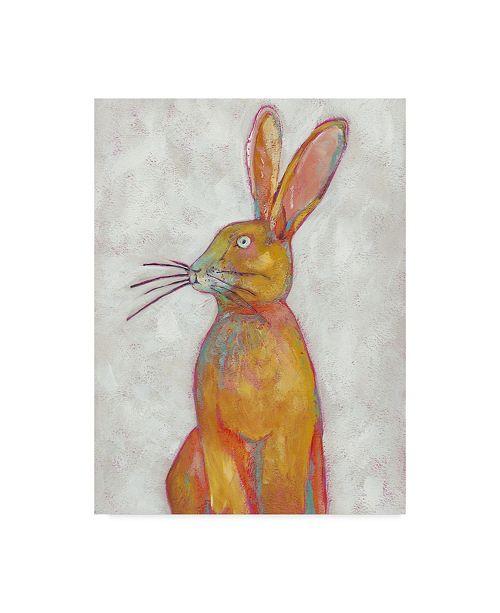 "Trademark Global Chariklia Zarris Woodland Friends II Canvas Art - 37"" x 49"""