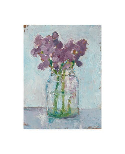 "Trademark Global Ethan Harper Impressionist Floral Study II Canvas Art - 20"" x 25"""