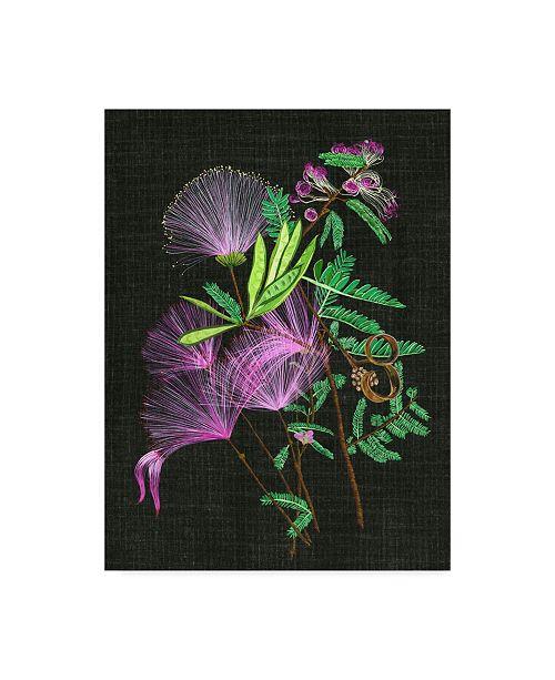"Trademark Global Melissa Wang Calliandra Surinamensis II Canvas Art - 37"" x 49"""