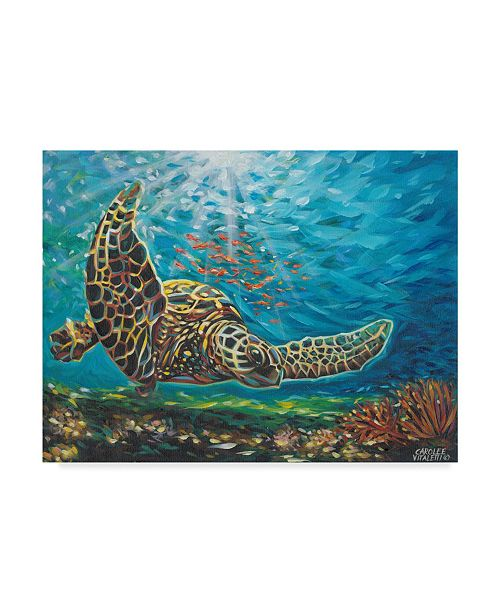 "Trademark Global Carolee Vitaletti Deep Sea Swimming I Canvas Art - 20"" x 25"""