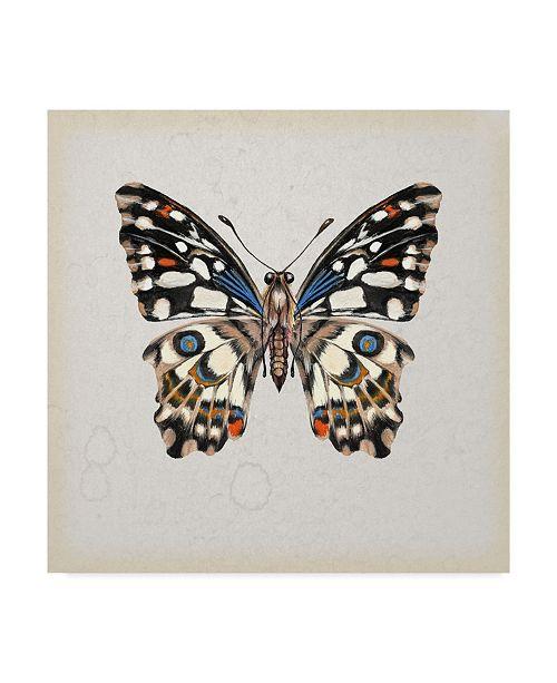 "Trademark Global Melissa Wang Butterfly Study II Canvas Art - 15"" x 20"""