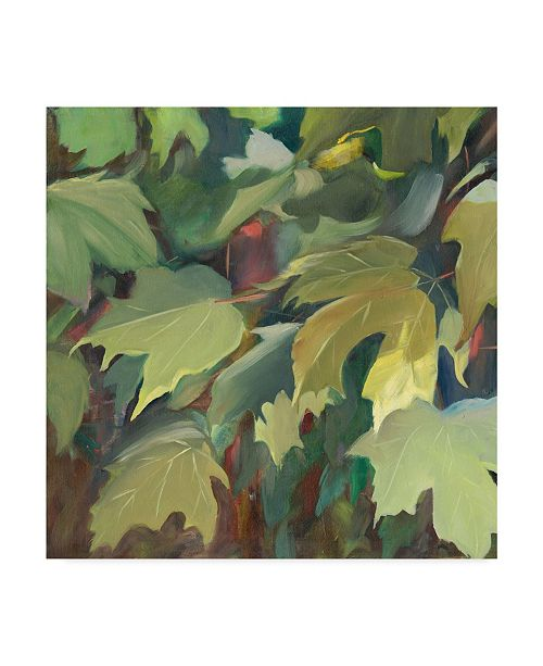"Trademark Global Sandra Iafrate Leaf Array I Canvas Art - 27"" x 33"""