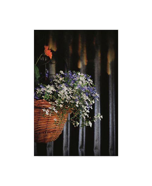 "Trademark Global Christine Sainte-Laudy Blue and White Flowered Waterfall Canvas Art - 20"" x 25"""