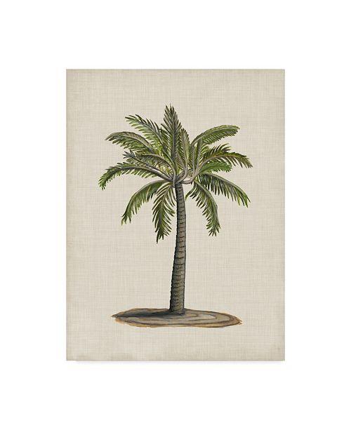 "Trademark Global Naomi Mccavitt British Palms I Canvas Art - 20"" x 25"""