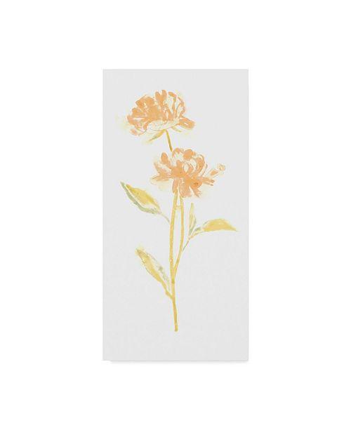 "Trademark Global June Erica Vess Bouquet Blush VII Canvas Art - 37"" x 49"""