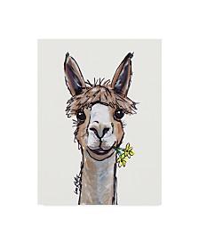 "Hippie Hound Studios Alpaca Lycoming Canvas Art - 15"" x 20"""