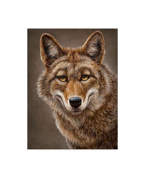 "Trademark Global Patrick Lamontagne Coyote Totem Canvas Art - 15"" x 20"""