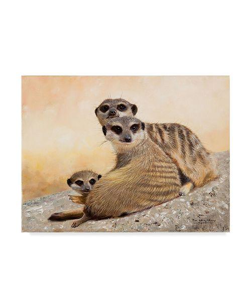 "Trademark Global Pip Mcgarry Meercat Family Canvas Art - 15"" x 20"""