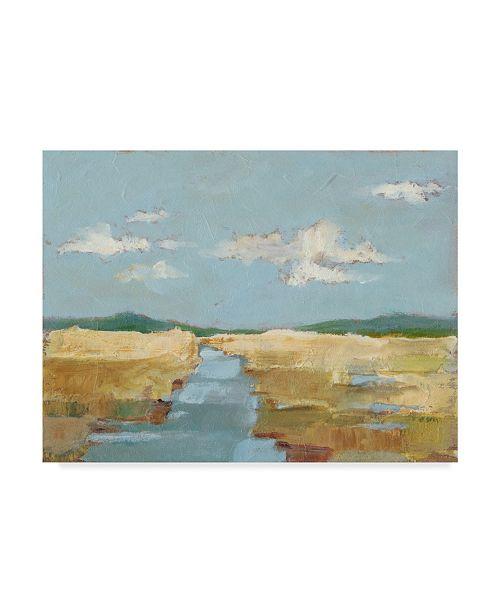 "Trademark Global Ethan Harper Summer Wetland II Canvas Art - 20"" x 25"""