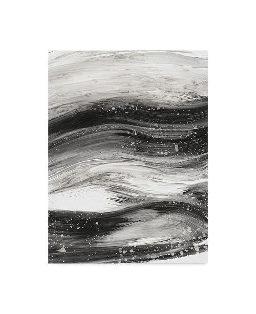 "Trademark Global Ethan Harper Black Waves II Canvas Art - 20"" x 25"""