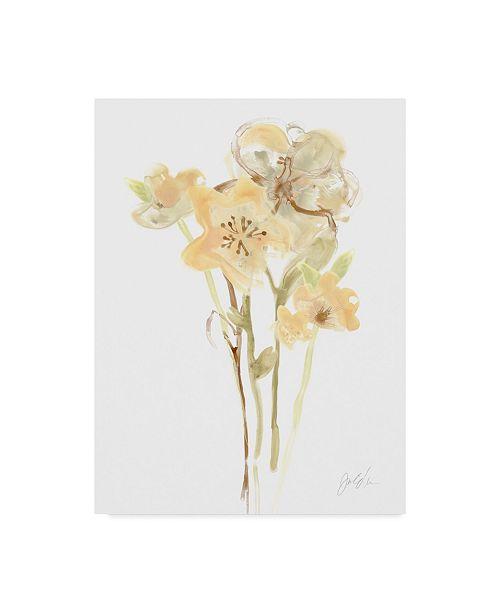 "Trademark Global June Erica Vess Apricot Dusk I Canvas Art - 37"" x 49"""