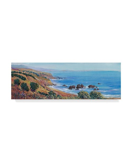 "Trademark Global Tim Otoole Panoramic Ocean View II Canvas Art - 15"" x 20"""