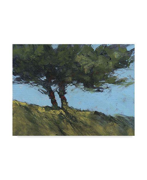 "Trademark Global Paul Bailey Hawthorne Duo Canvas Art - 37"" x 49"""