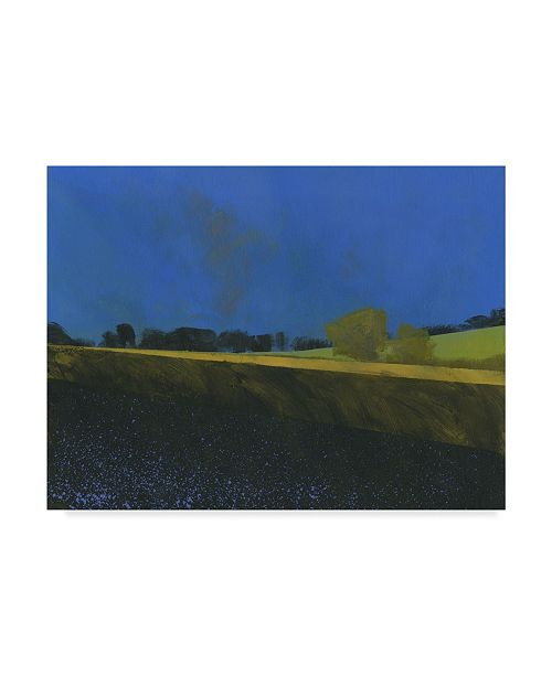 "Trademark Global Paul Bailey Dark Earth Canvas Art - 20"" x 25"""