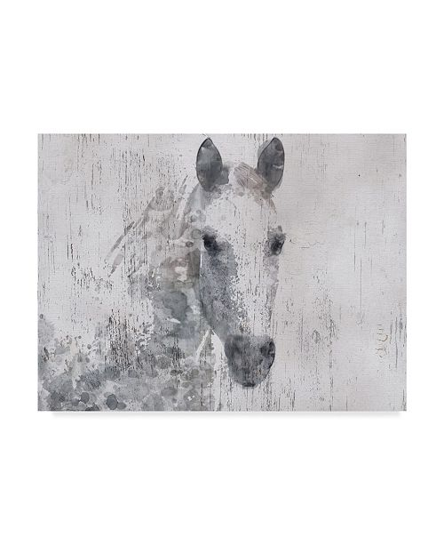 "Trademark Global Irena Orlov Dapple Horse I Canvas Art - 20"" x 25"""