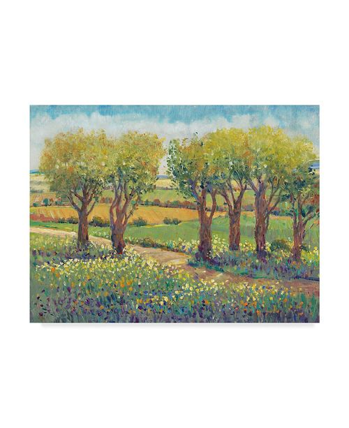 "Trademark Global Tim Otoole Garden Path I Canvas Art - 15"" x 20"""