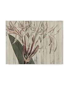 """Studio W Rustic Floral I Canvas Art - 15"""" x 20"""""""