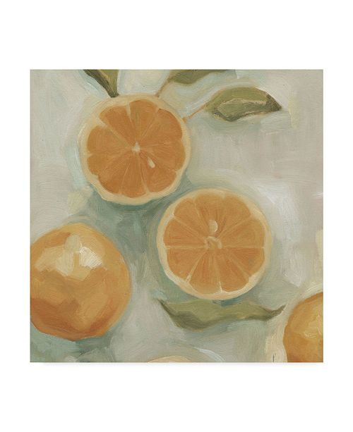 "Trademark Global Emma Scarvey Citrus Study in Oil I Canvas Art - 20"" x 25"""