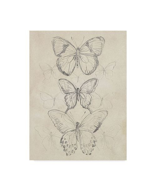 "Trademark Global June Erica Vess Vintage Butterfly Sketch I Canvas Art - 20"" x 25"""