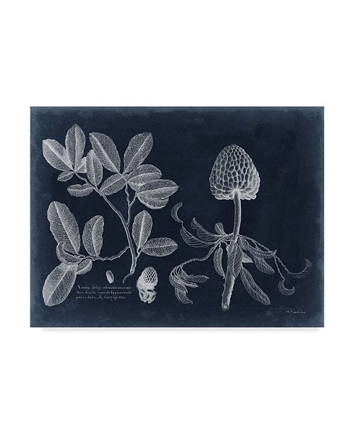 "Trademark Global Vision Studio Foliage on Navy II Canvas Art - 15"" x 20"""