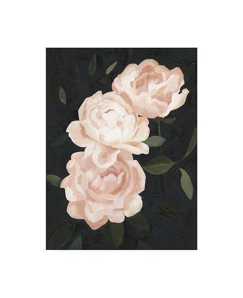 "Trademark Global Emma Scarvey Nighttime Flora III Canvas Art - 20"" x 25"""