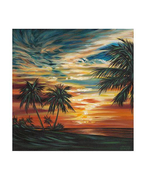 "Trademark Global Carolee Vitaletti Stunning Tropical Sunset I Canvas Art - 15"" x 20"""