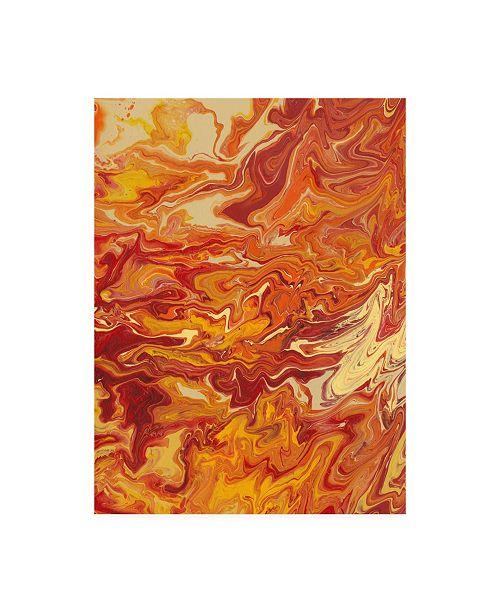 "Trademark Global Regina Moore Nomadic Blaze IV Canvas Art - 20"" x 25"""