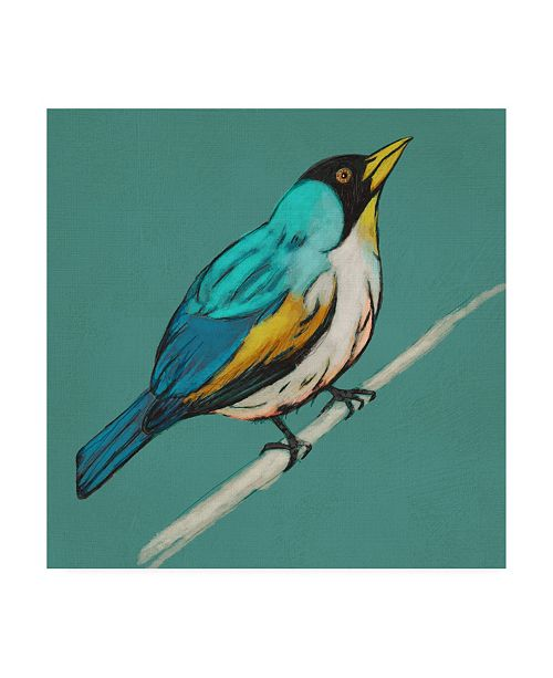 "Trademark Global Chariklia Zarris Winged Sketch Ii on Teal Canvas Art - 20"" x 25"""
