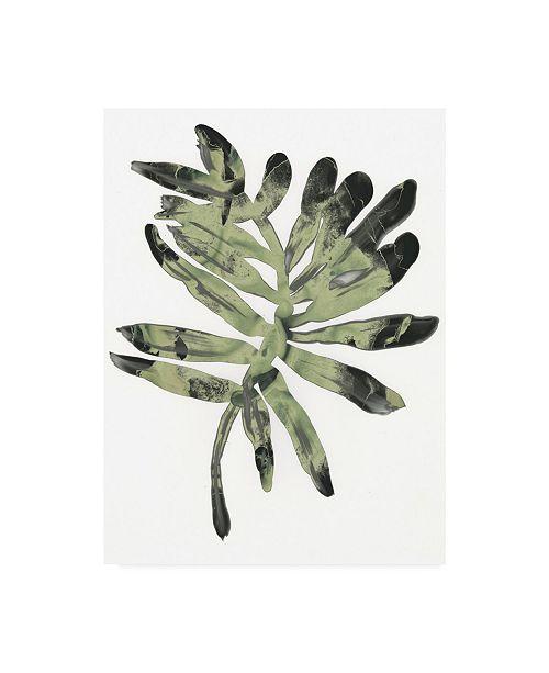 "Trademark Global June Erica Vess Foliage Fossil V Canvas Art - 20"" x 25"""