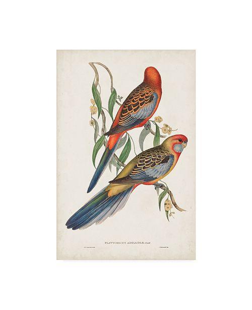 "Trademark Global John Gould Tropical Parrots II Canvas Art - 20"" x 25"""