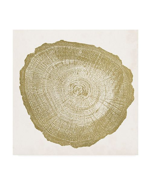 "Trademark Global Vision Studio Tree Ring IV Canvas Art - 15"" x 20"""
