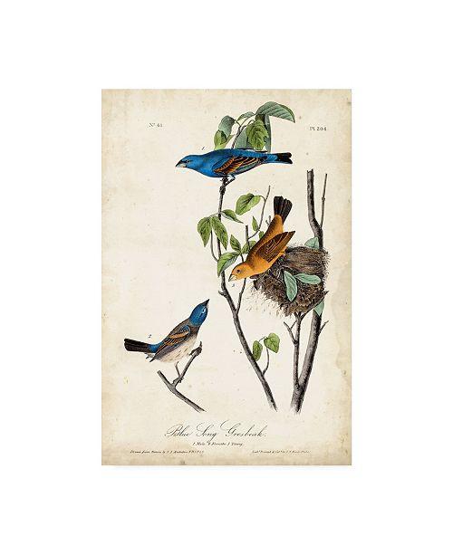 "Trademark Global John James Audubon Blue Song Grosbeak Canvas Art - 20"" x 25"""