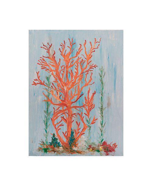 "Trademark Global Olivia Brewington Painterly Coral II Canvas Art - 15"" x 20"""