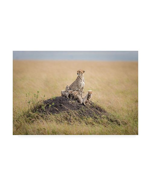 """Trademark Global Ted Taylor Regal Protector Canvas Art - 15"""" x 20"""""""