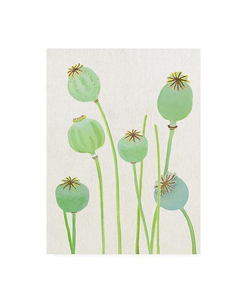 "Trademark Global India & Purry Poppy Pods on Ecru Canvas Art - 36.5"" x 48"""