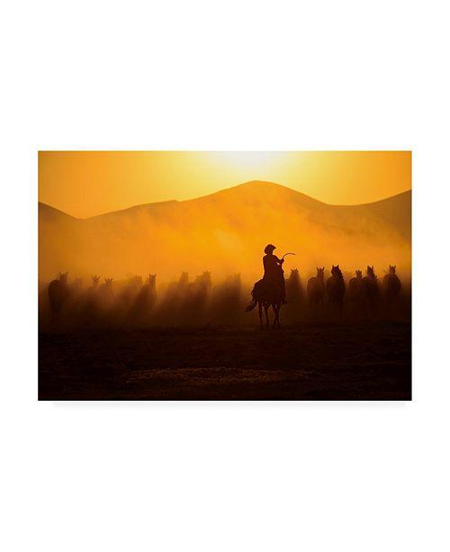 "Trademark Global Yavuz Pancareken Chasing the Jades Sunset Canvas Art - 19.5"" x 26"""