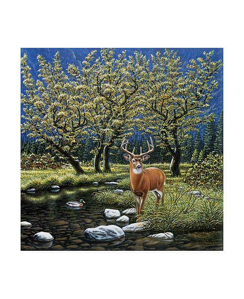 "Trademark Global John Van Straalen Streamside Spirits Canvas Art - 36.5"" x 48"""