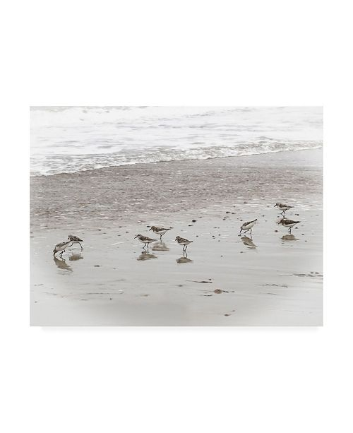 "Trademark Global Brooke T. Ryan Sandpipers Canvas Art - 36.5"" x 48"""