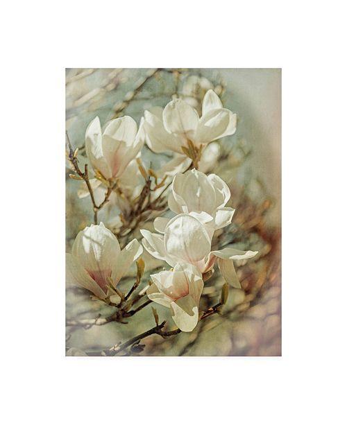 "Trademark Global Brooke T. Ryan Vintage Inspired Magnolias Canvas Art - 19.5"" x 26"""