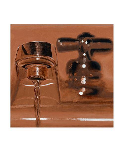 """Trademark Global Roderick Stevens Rust Faucet Canvas Art - 19.5"""" x 26"""""""