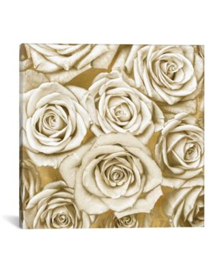 "Ivory Roses On Gold by Kate Bennett Wrapped Canvas Print - 26"" x 26"""