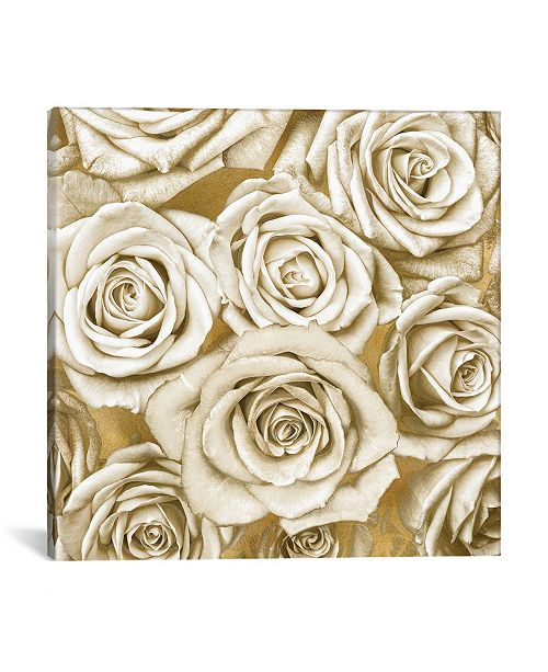 """iCanvas Ivory Roses On Gold by Kate Bennett Wrapped Canvas Print - 26"""" x 26"""""""