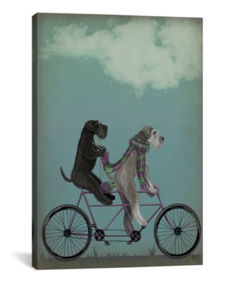 "Schnauzer Tandem by Fab Funky Wrapped Canvas Print - 26"" x 18"""