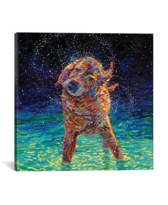 "Moonlight Swim by Iris Scott Wrapped Canvas Print - 26"" x 26"""